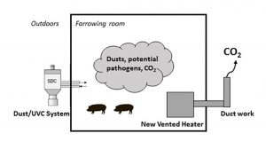 Test Farrowing Room