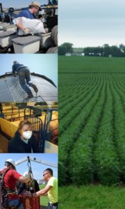 Photo collage of farmers